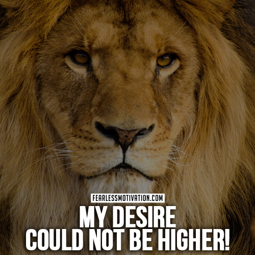 30 Motivational Lion Quotes In Pictures