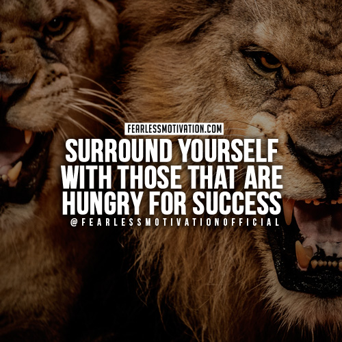 lion quotes-surround