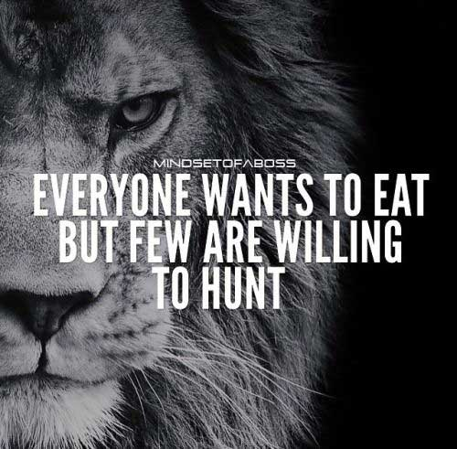 30 Motivational Lion Q...