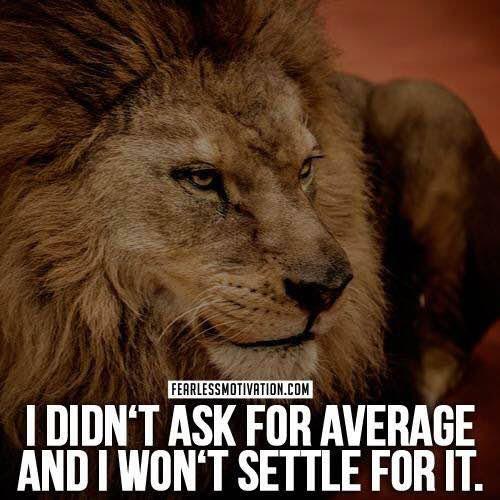 average never settle