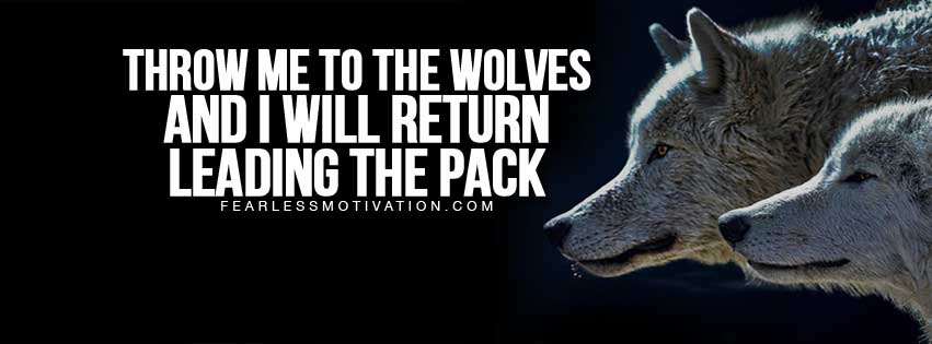 free Facebook covers wolves