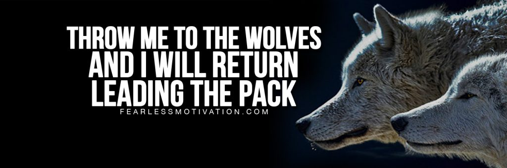 free twitter covers wolves