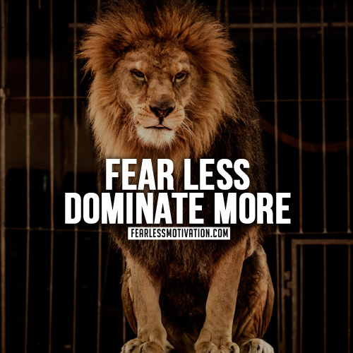 lion quotes fear less dominate more