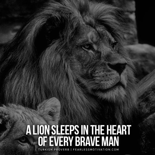 30 motivational lion quotes in pictures courage strength - Animal pak motivational quotes ...
