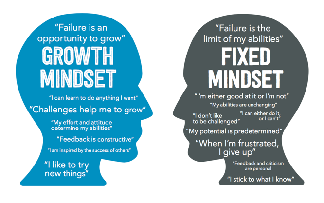 fixed growth mindset