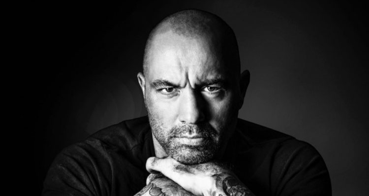 Find Your Passion These Joe Rogan Quotes Will Bring You To Life