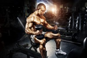 The Ultimate Nutrition Guide for Daily Muscle Growth
