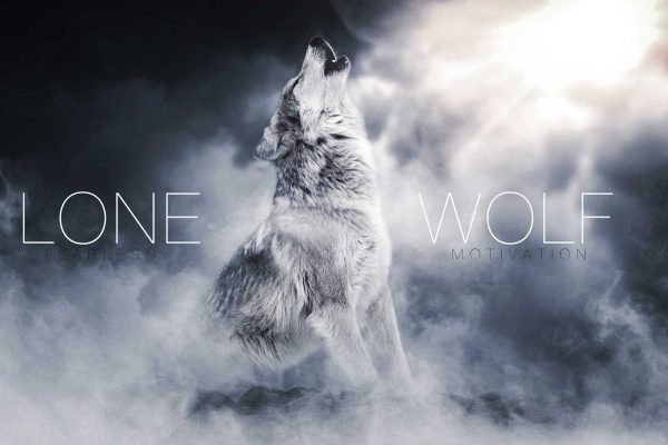 lone wolf the song